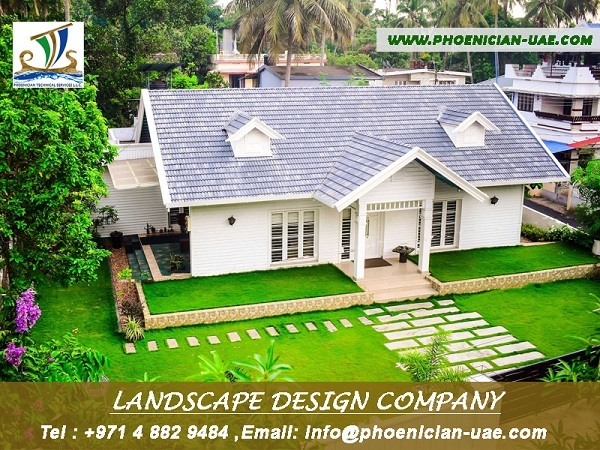 Buying Palm Trees & Palm- Landscape Design Company