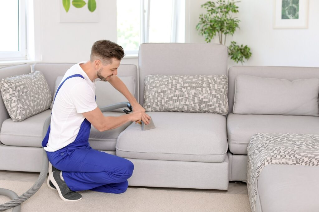 How Often Should One Clean the Couch? – Here is The Answer